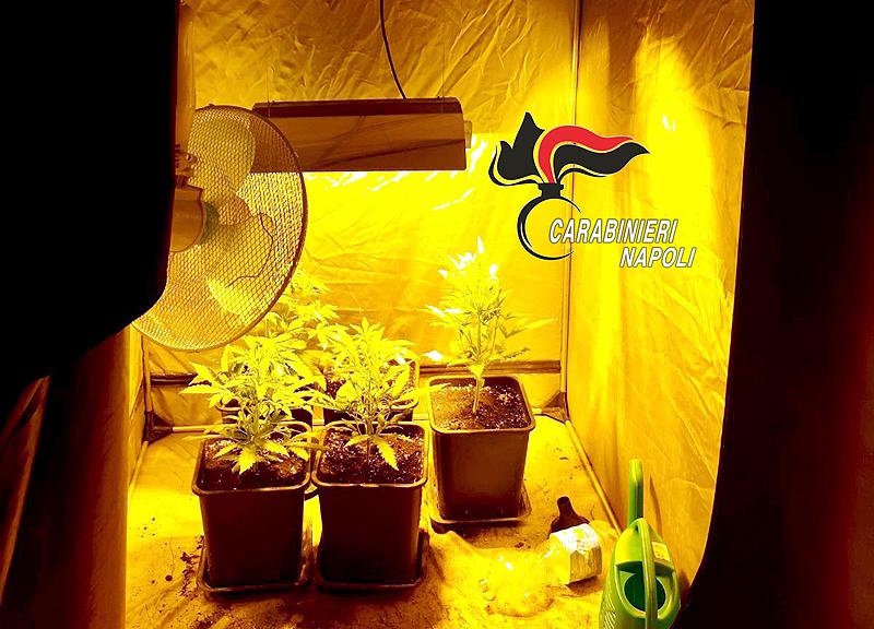 Acate: 150 dosi di marijuana, arrestati due studenti di 16 anni